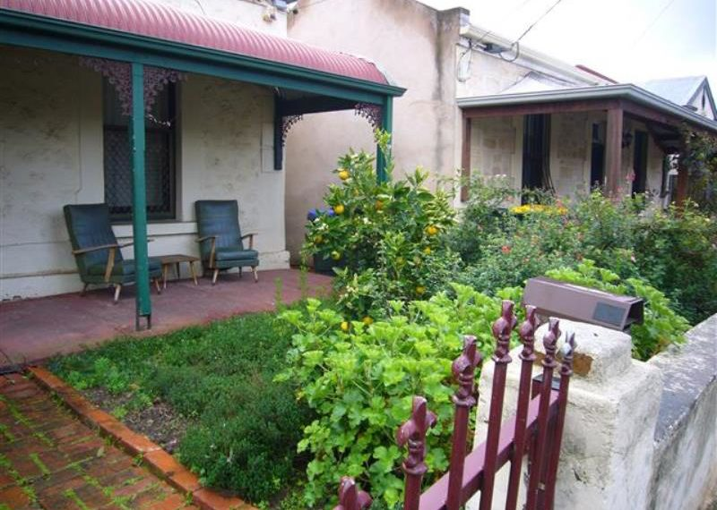 144 Drayton - garden